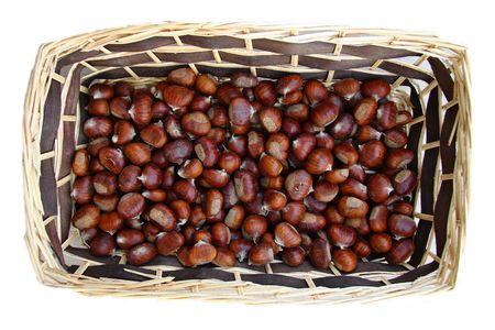 chestnut fruit of autumn brown Stock Photo - 5839677