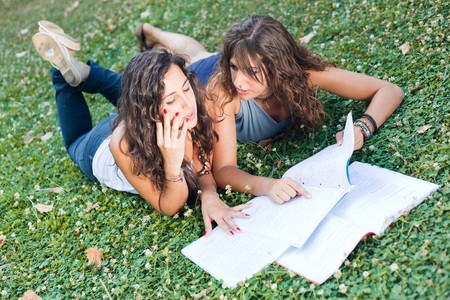 Two Young Woman Study Togheter at Park Stock Photo - 8021045