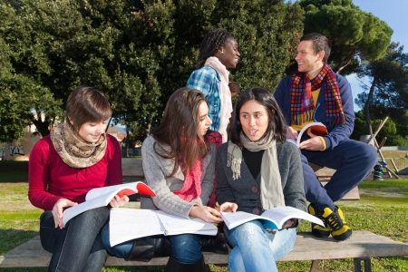 College Students Studying Togheter at Park photo