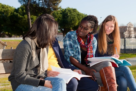 College Students Studying Together at Park photo