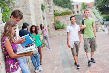 Multicultural Group of College Students Stock Photo - 10773706
