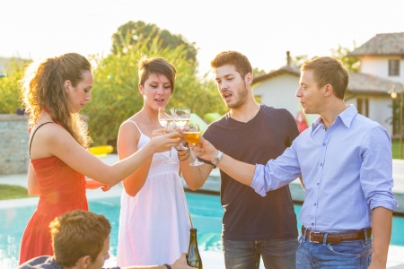 wineglass: Group of Friends Toasting at Party