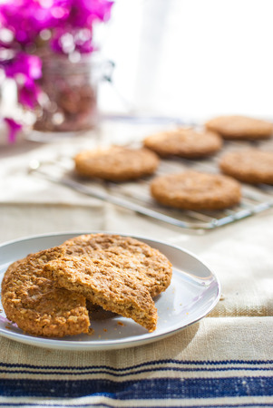 oatmeal cookie: Digestive Cookies Stock Photo