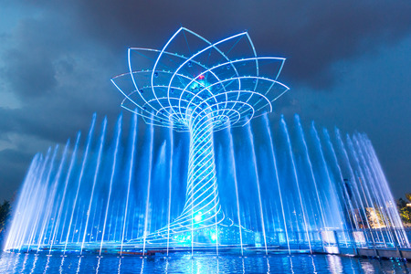 albero: MILAN, ITALY - JUNE 01, 2015: The tree of life (Albero della vita in Italian) during night water-play show. The tree of life is the symbol of Expo 2015 area.