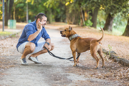 romantic man: Man with his dog at park. They are stadning side by side, he is looking at his dog and playing with it. Stock Photo