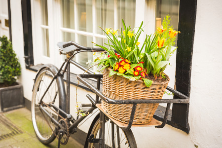 old windows: Flowers on an old bike basket in front of a window. The bike is black and very old, flowers are yellow and red and the basket is made by wicker. Spring theme. Stock Photo