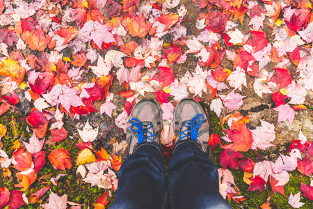 Hiking shoes with red leaves all around. Hiker and his feet with autumn themed ground. Fall seasone, nature and healthy lifestyle concepts photo