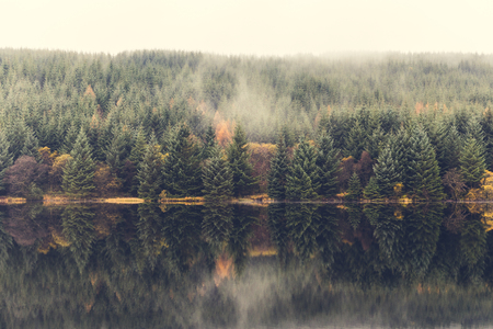Autumn scene, mist over the trees next to the lake. Nature and travel themed composition in Wales on a moody day. Green, orange and brown leaves