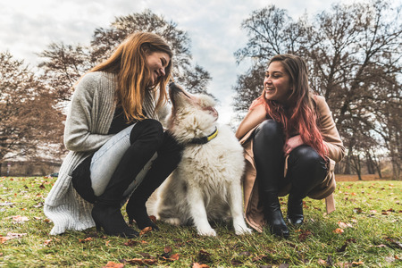 Girls playing with a dog at park. Furry pet with two young women at park in Munich. Animals and lifestyle concepts