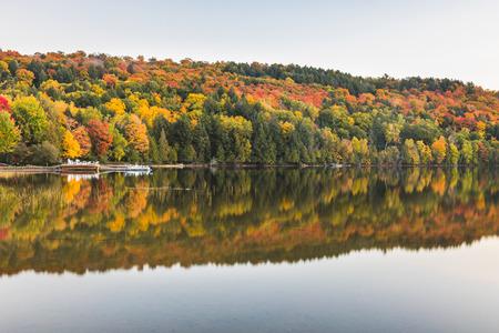 秋の風景、湖で反射と木。滑らかな水の湖沿いの秋のシーズンで、オンタリオ州、カナダで美しく、静かなシーン