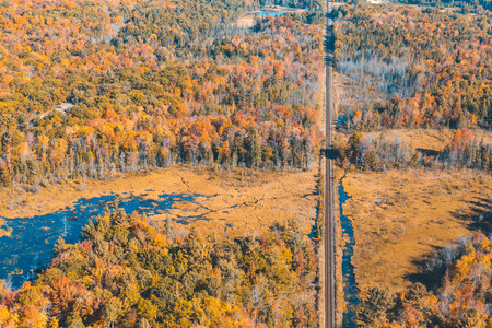 Railway through the forest with autumn colors . Photo taken in Ontario, Canada, from the helicopter during fall season. Colourful trees and wood. Travel and nature concepts