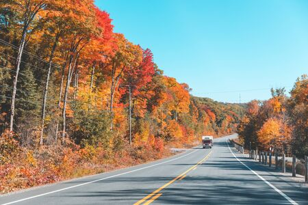 American highway through the wood in autumn - Maple trees with multi colour leaves along the road on a sunny day in Ontario, Canada - Travel and nature concepts.