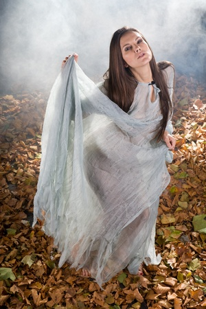 very sexy witch dressed up in halloween gothic style with a shine through dress in a forrest Stock Photo - 10868548