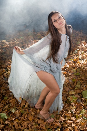 very sexy witch dressed up in halloween gothic style with a shine through dress in a forrest photo