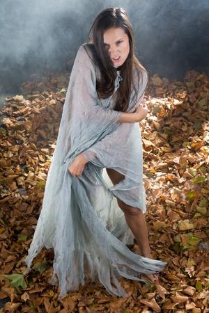brujas sexis: la bruja vestida muy sexy en Halloween estilo gótico con un brillo a través del vestido en un bosque