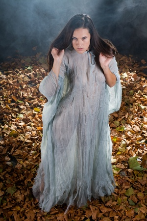 very sexy witch dressed up in halloween gothic style with a shine through dress in a forrest Stock Photo - 10868549
