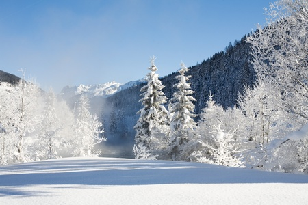 beautiful image of a cold  winter scene with mountains  and snow and a wild river photo