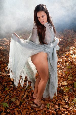 very sexy woman as a witch dressed up in hallloween gothic style with a shine through dress in a forrest photo