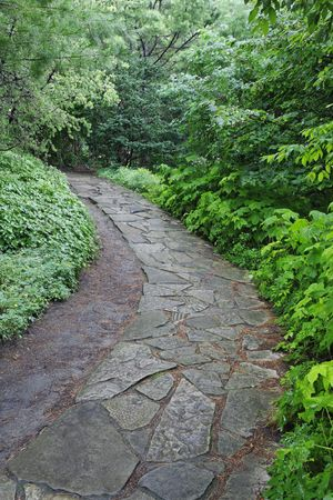 as one: Stone pathway in the Arboretum located at the Montreal Botanical Garden. The Arboretum has about 7000 specimans of trees and scrubs. The Montreal Botanical Garden ranks as one of the worlds largest and most spectacular botanical gardens. Montreal, Quebec