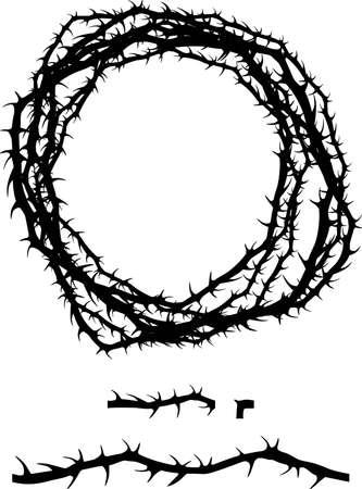crown of thorns: espina jaggy cepillo de arbusto de la planta aument�