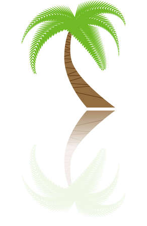 abstract palm icon illustration vector  illustration