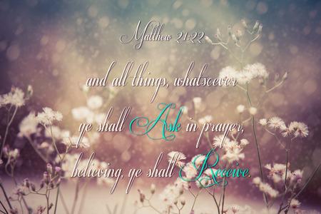 shalom: Matthew 21:22 bible verse on flora background