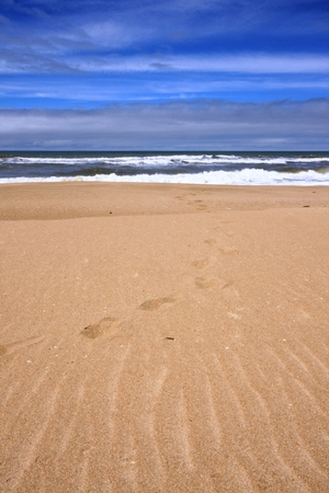 celeste: Footprints in the Sand Stock Photo