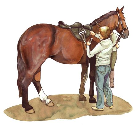 saddle: Watercolor illustration of a groom preparing her horse to ride Stock Photo