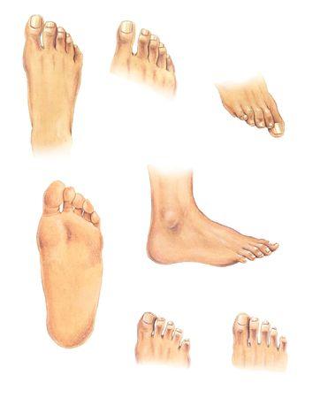 Watercolor illustratie: set van de menselijke voet in verschillende posities