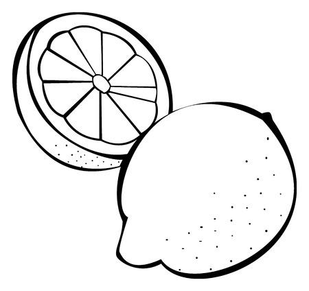 Zwart-wit afbeelding van citroenen Stock Illustratie