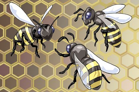 kelp: Illustration of three flying wasps - Cartoon style - Abstract hive background Stock Photo