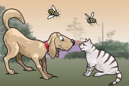 Illustration of a dog and a cat watching each other and smiling. Two bees are flying above them. Countryside sunset background. Cartoon style illustration