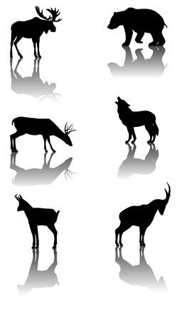 Zes silhouetten met reflex van wildlife dieren: moose, Beer, herten, wolf, gemzen, steenbokken Stock Illustratie