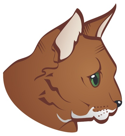 nose close up: Illustration of a brown cat