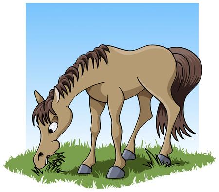 Cartoon-stijl illustratie van een schattige jonge paarden eten gras