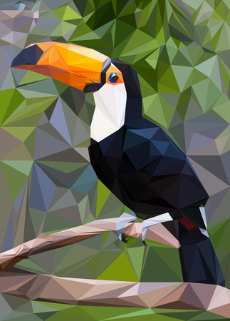 Illustration of a Toucan, low poly technique.