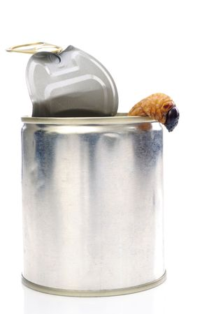 A sago worm crawling out of a tin can on white background. photo