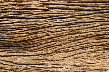 Century old wood texture for use as background. photo