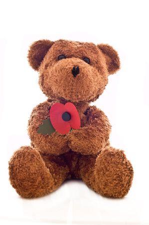 Teddy Bear holding poppy flower.