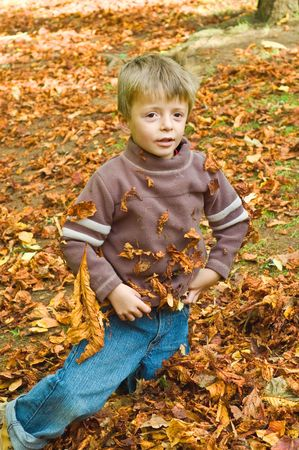 a child playing in the Autumn red fallen leafs  Stock Photo