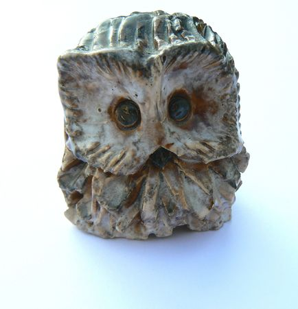 collectable: owl