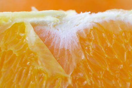 segmento: Orange segmento