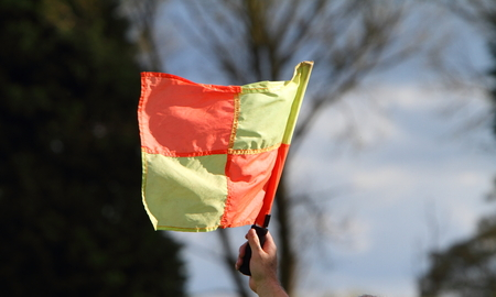 linesman: Hand holding a flag at a sporting event