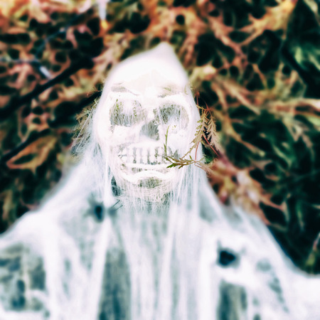 ghostly: Halloween decoration - ghostly skeleton hiding in the leaves