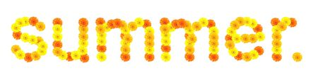 Word SUMMER made of gerber flowers Stock Photo