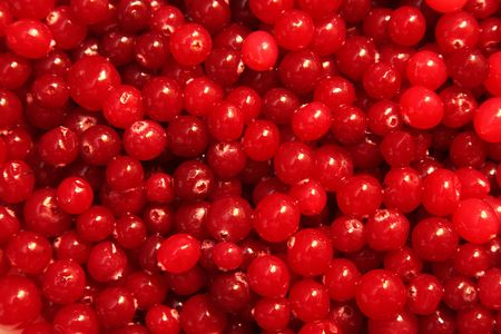 Close Up of Red Cranberry Texture