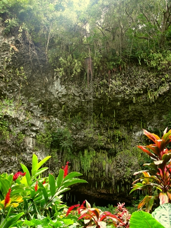 Kauai, Hawaii - February 20 2016: Fern Grotto