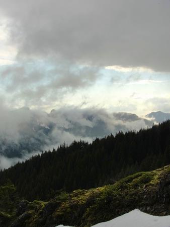 Siuslaw, Oregon: Coastal forested mountain range