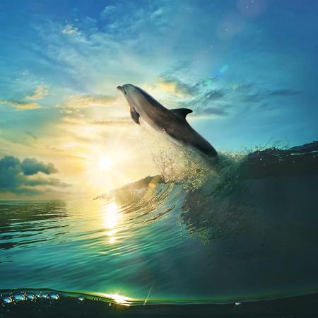 Ocean-view design postcard. Beautiful colorful breaking surfing ocean wave rushing at sunset time