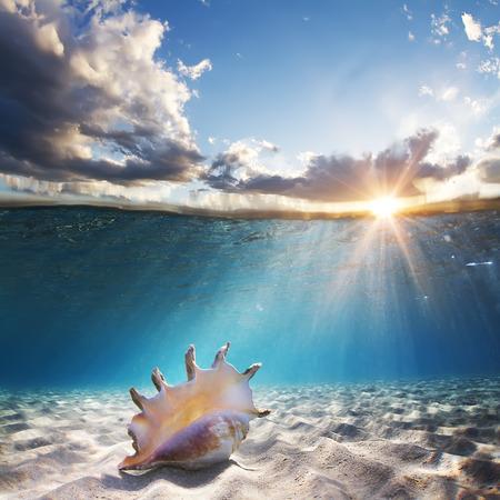 ontwerpsjabloon met zeeschelp onderwater op zanderige bodem en zonsondergang dakraam opgesplitst door waterlijn Stockfoto